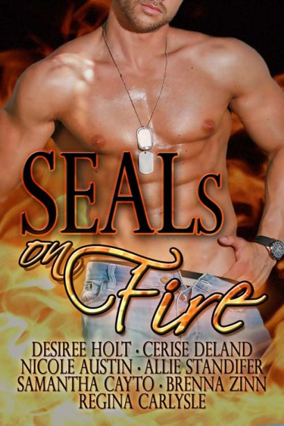SEALs on Fire Anthology